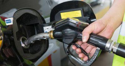 Ab 2030: Grüne wollen Benzin- und Dieselautos verbieten
