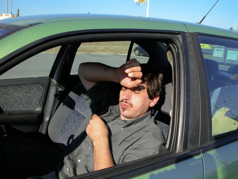 Die Hitze im Auto zu unterschätzen ist ein gefährlicher Fehler.